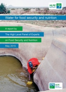 HLPE Report 9 - Cover_100dpi