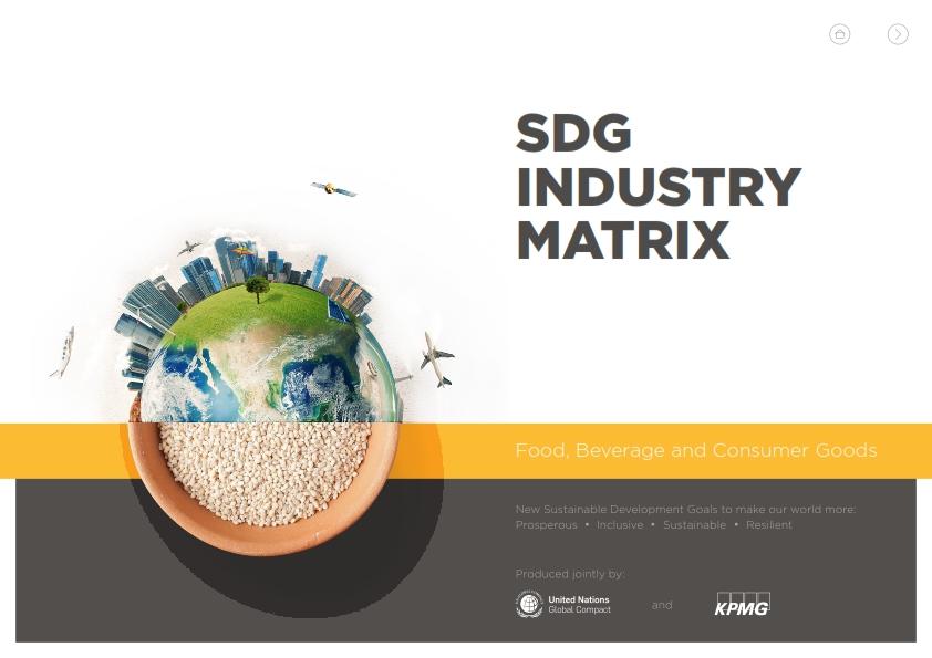 SDGMatrix-ConsumerGoods_001