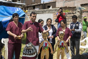 Physicians in Ayacucho District in Peru talk about the effects of aneamia on children