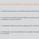 sun-movements-strategic-objectives