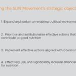 sun-movements-strategic-objectives