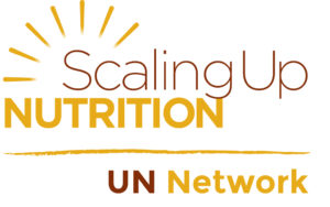 UN_Network_without_tagline