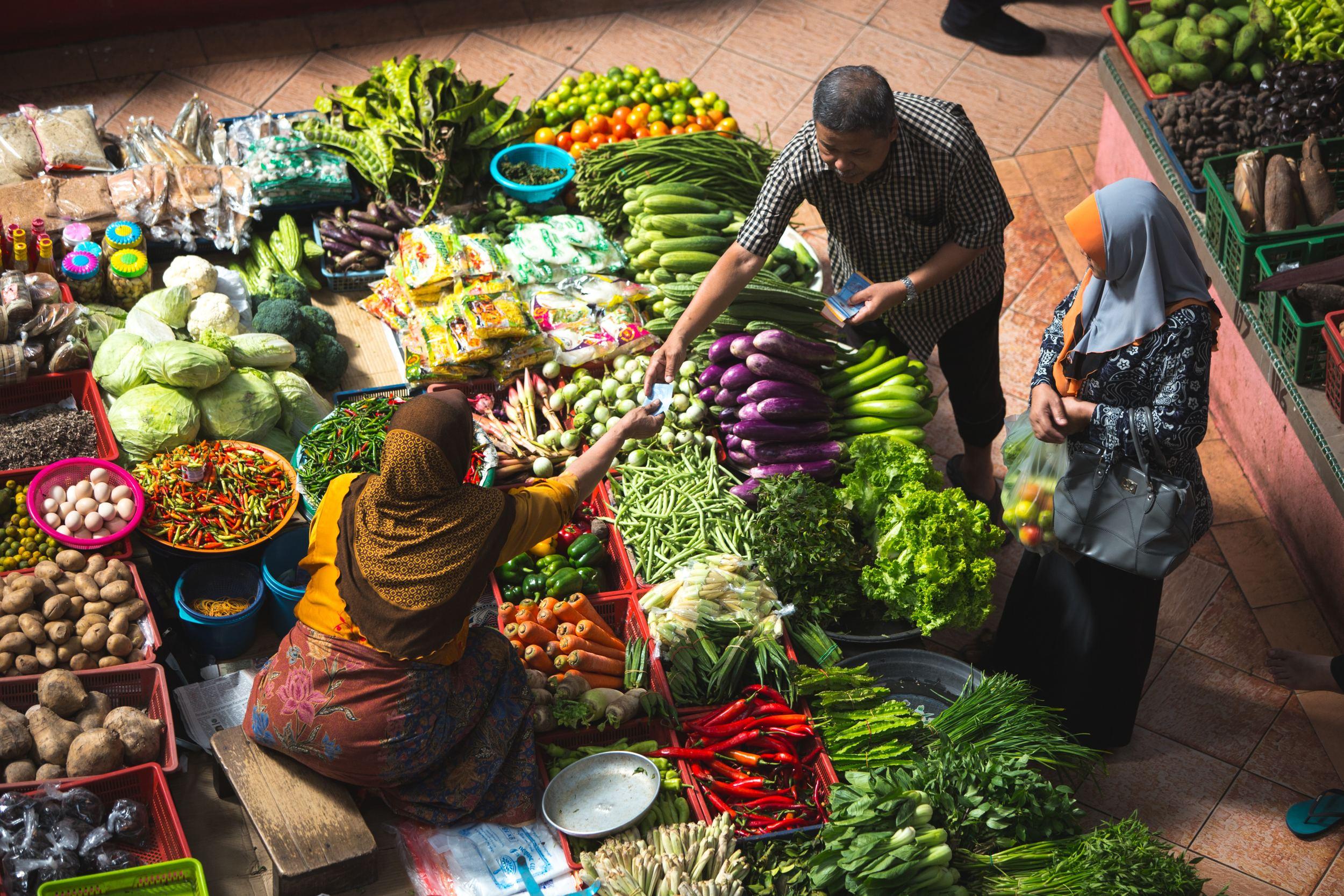 Los sistemas alimentarios y la nutrición - SUN