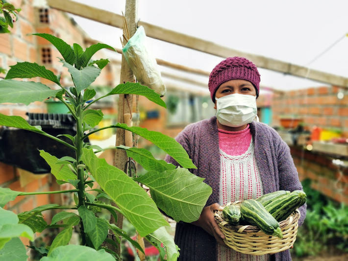 Impact of COVID-19 on livelihoods, health and food systems – Joint statement by ILO, FAO, IFAD and WHO