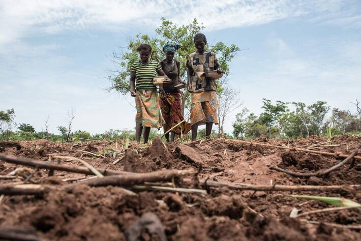 Acute food insecurity on the rise as the Central African Republic reels from impacts of conflict and COVID-19