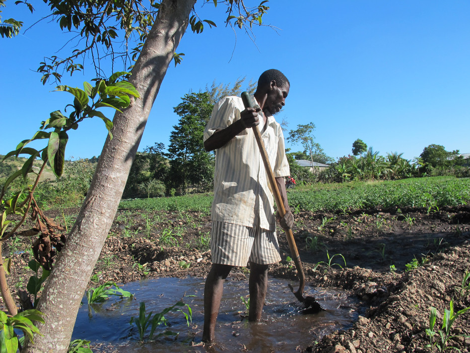 Small-scale farmers of Haiti to receive help for food production and COVID-19